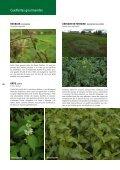 Nature Cueillettes gourmandes aux quatre saisons - Page 2