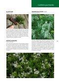 Nature Cueillettes gourmandes aux quatre saisons - Page 3