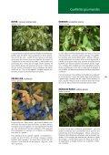 Nature Cueillettes gourmandes aux quatre saisons - Page 5