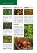 Nature Cueillettes gourmandes aux quatre saisons - Page 6