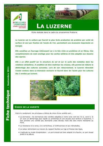 LA LUZERNE   Chambre Du0027Agriculture Des Deux Sèvres