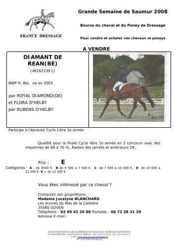 DIAMANT DE REAN(BE) - France Dressage