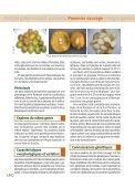 Irvingia gabonensis/I. wombolu Pommier sauvage - Bioversity ... - Page 4