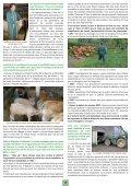 Bulletin N°55 - Veau sous la Mère - Page 3