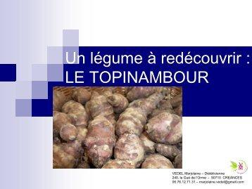 LE TOPINAMBOUR - Bergerie Nationale de Rambouillet