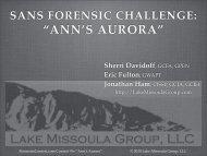 """""""ANN'S AURORA"""" - SANS Computer Forensics"""
