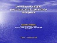 Gaetano Messina - Cooperambiente