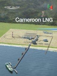 Cameroon LNG - GDF Suez