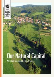Our Natural Capital: A Profitable Investment In Times Of Crisis - WWF
