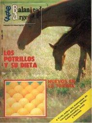 año2 / n°31 / octubre 1984 - caena.org.ar