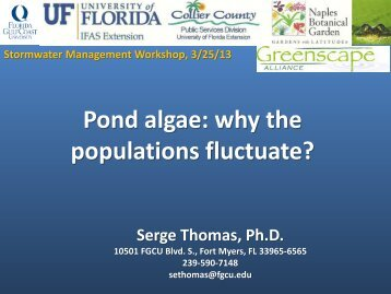 Pond algae: why the populations fluctuate?