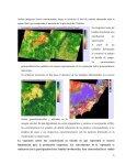 Informe Final - Sistema de consulta de producciones extensionistas ... - Page 6