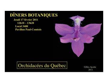 Orchidacées du Québec