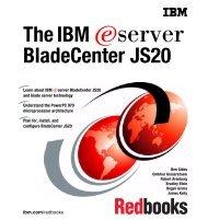 The IBM eServer BladeCenter JS20 - IBM Redbooks
