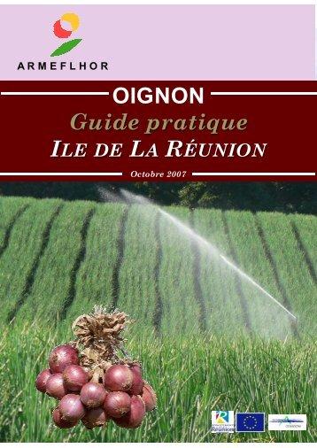 Production d'oignon à partir de bulbilles : - ARMEFLHOR
