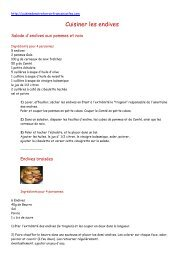 Cuisiner les endives - Cuisine de notre terroir français - Wifeo