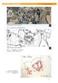 E. Cassan-Pisani, Dossier thématique : Du castrum au fortalicium - Page 6