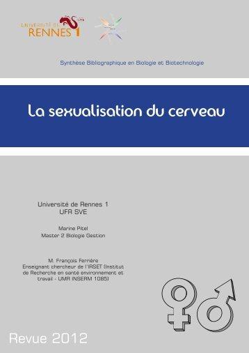 La sexualisation du cerveau - Université de Rennes 1