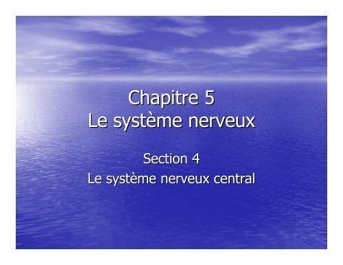 Chapitre 5 Section 4