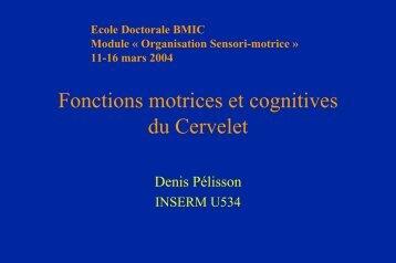 Fonction motrices et cognitives du cervelet