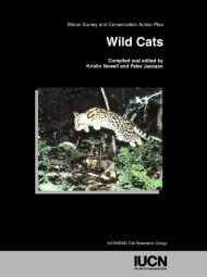 Wild Cats: Status Survey and Conservation Action Plan - Carnivore