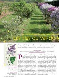 Lilas 79 OK PM 2:Mise en page 1 - Conseil général du Val-de-Marne