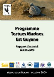 Programme Tortues Marines Est Guyane - Association Kwata