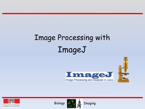 Image Processing with ImageJ pdf - EPFL