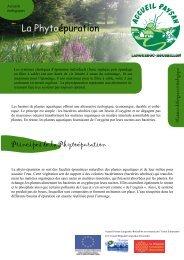 La Phytoépuration - Accueil Paysan Languedoc Roussillon