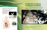 Chapitre 3 La digestion et l'apport au sang des nutriments - Hachette