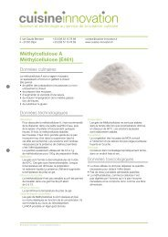 methylcellulose A - Cuisine Innovation
