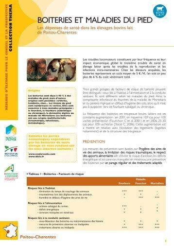 Protocole de soins boiteries - Chambre d agriculture charente maritime ...