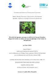 Diversité des ignames sauvages et cultivées de Guyane française ...