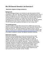 Bio 230 Lab 5- Restriction Digests