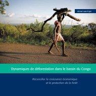 Dynamiques de déforestation dans le bassin du Congo - The Forest ...