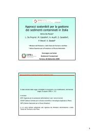 Approcci sostenibili per la gestione dei sedimenti contaminati in Italia