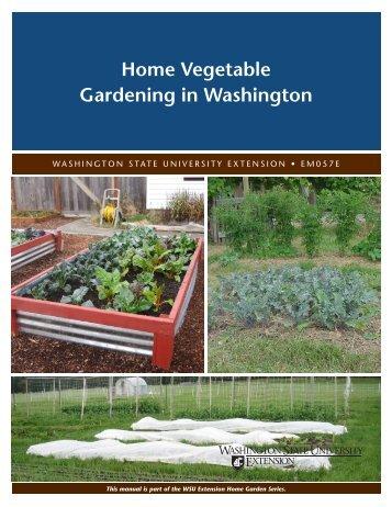 Home Vegetable Gardening in Washington - Washington State ...