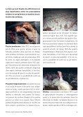 """Flyer """"Volaille importée: une détresse animale cachée"""" - Protection ... - Page 3"""