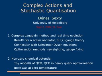 Complex Actions and Stochastic Quantisation - Theory Center