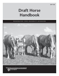 Draft Horse Handbook - Washington State University