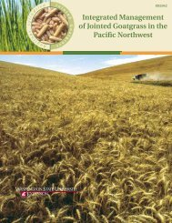 Integrated Management of Jointed Goatgrass in the Pacific Northwest