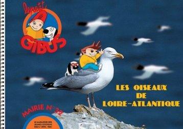 LES OISEAUX DE LOIRE ATLANTIQUE - Le Petit Gibus