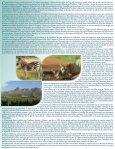 Beautés de l'Afrique du Sud - Agence voyage Louise Drouin - Page 2