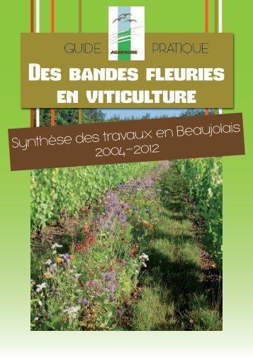 Guide pratique des bandes fleuries en viticulture - Oncfs