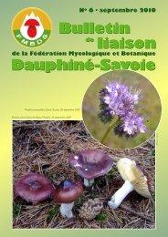 Bulletin de Liaison N6 septembre 2010 FMBDS - Société ...