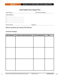 Module 3 Infant-Toddler Action Support Plan - Center on the Social ...