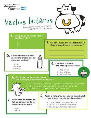 Vaches laitières - MAPAQ