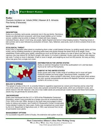 Plant Conservation Alliance®s Alien Plant Working Group Kudzu ...