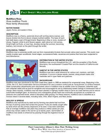 Plant Conservation Alliance®s Alien Plant Working Group Multiflora ...