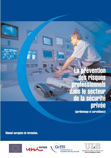 La prévention des risques professionnels dans le secteur de ... - DPSA